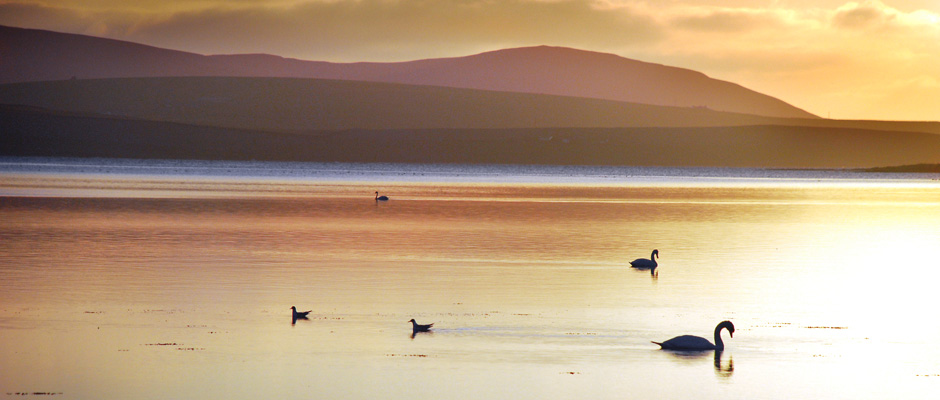 featured_image_orkney