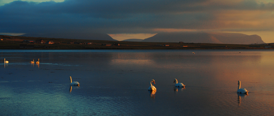 featured_image_orkney_1