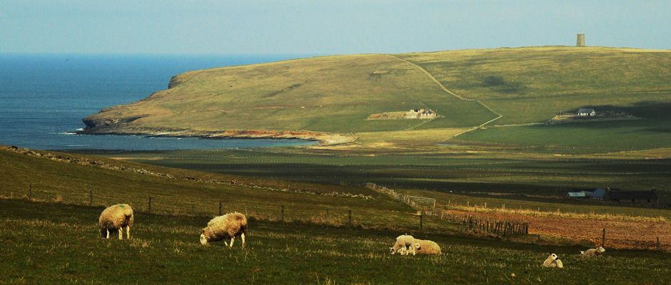 featured_image_orkney_6