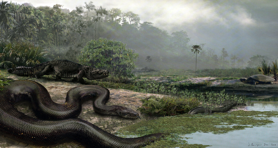 Smithsonian documentary highlights fossil of monster snake found by UF paleontologists