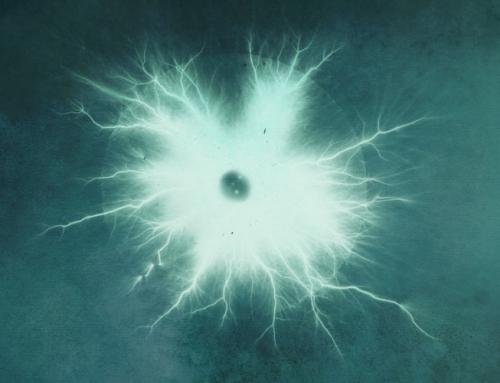 Higgs 1: Frozen light