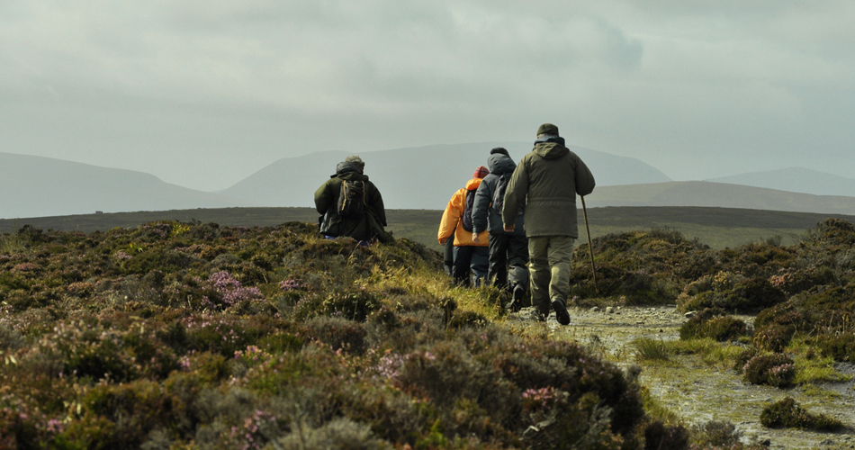 Foraging Fortnight in 2019